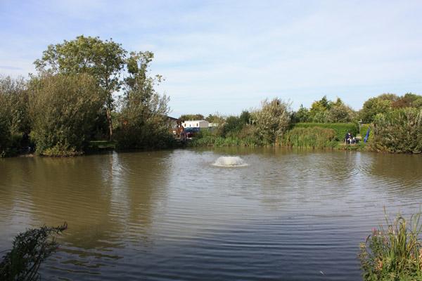 BEAUTIFUL SURROUNDINGS AT THE LAKE