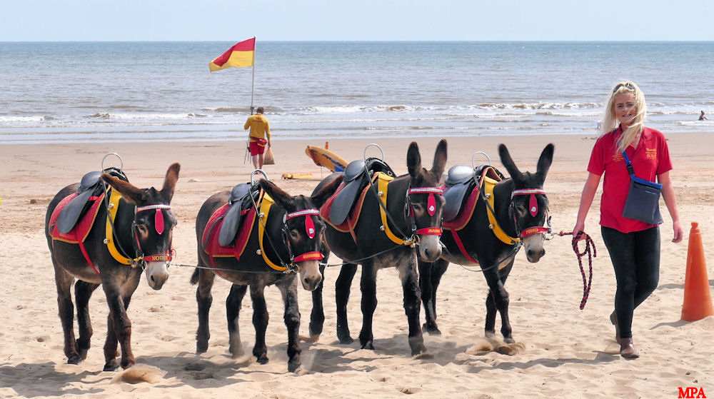 DONKEY RIDES AT MABLETHORPE BEACH